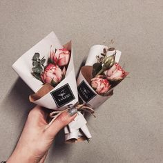 vaness flowers - Google Search