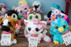 Adoptable pets from a Beanie Boos Pet Adoption Themed Birthday Party via Kara's Party Ideas | KarasPartyIdeas.com (21)