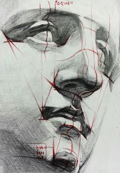 Anatomy for artists, anatomy art, face anatomy, human anatomy drawi Drawing Heads, Life Drawing, Figure Drawing, Drawing Faces, Anatomy Sketches, Drawing Sketches, Art Drawings, Drawing Tips, Human Anatomy Drawing