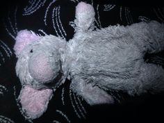 Found on 23 Feb. 2016 @ Gatwick Airport South Terminal. Found at Baggage Reclaim off the Munich flight arrived 22:15 Visit: https://whiteboomerang.com/lostteddy/msg/f23srn (Posted by Karen on 23 Feb. 2016)