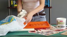 Protect your paint tray with our easy tips! Painted Trays, Cleaning, Easy, Tips, Painting, Painted Shells, Painting Art, Home Cleaning, Paintings