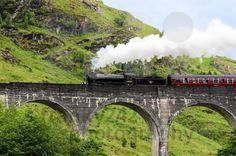 Steam train on Glenfinnan viaduct, known from Harry Potter - royalty free photos by franky242 photography - buy and download this photo onli...
