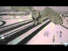 Jan AM ET A traffic camera caught this dramatic view of a snowy owl swooping across Quebec's Highway 40 on Jan. Owl Gifs, Crazy Owl, Traffic Camera, Big Animals, Cryptozoology, Snowy Owl, Surfing, Quebec, Owls