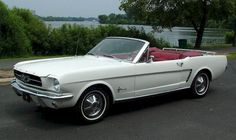 papa's idea of a family car. 1965 Mustang convertible.  (wimbledon white w/ red leather interior, 1965)