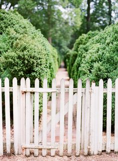 A Williamsburg Wedding | SW A Williamsburg Wedding | Editorial l photographed by Katie Stoops
