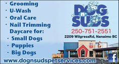 Vancouver Island, Small Dogs, Coupons, Canada, Ads, Puppies, Cubs, Coupon