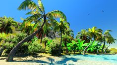 Quick and Easy Guide to the Best Hawaiian Islands - Easy Planet Travel Best Island In Hawaii, Best Hawaiian Island, Hawaiian Islands, Natural Sunscreen, Tropical, Best Essential Oils, Image House, How To Relieve Stress, Cool Pictures