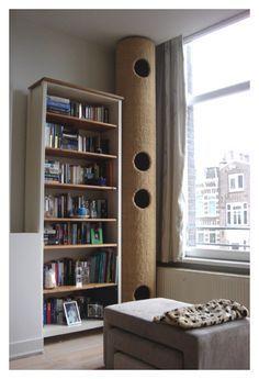 diy cat bookshelf climbing ramp - Google Search