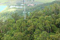 Australia - Rainforest and Aboriginal Experience at Kuranda