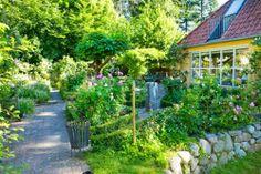 paseo jardin frondoso