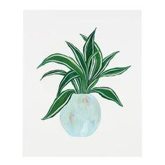 Dracaena Plant Print – Our Heiday