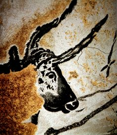 Head of the Great Bull, Lascaux, France - The incredibly detailed Paleolithic cave paintings found in Lascaux are estimated to be 17,300 years old.