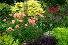 min trädgård - Google Search