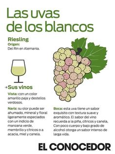 Tipos de corcho vinos pinterest for De donde se obtiene el marmol