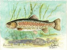 "5x7 Print ""RAINBOW TROUT"" Original Watercolor Painting by Jamie Dauch a Michigan artist - Fish Wildlife Lake House Decor. $18.50, via Etsy."