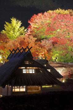 Lake Kawaguchi Autumn Festival (Lighting) 河口湖 もみじ回廊・紅葉まつり  The house is a miniature of old Japanese house created for the autumn festival. 今年はミニチュアの茅葺き屋根の集落が展示されていました。  www.fujisan.ne.jp/ (日本語、中国語、韓国語、English)  Lake Kawaguchi, Yamanashi Pref, Japan