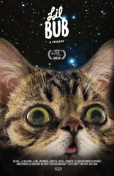 Bub in space! | Have You Ever Wondered What Lil Bub Sounds Like?