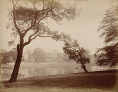 The Garden Front from the lake, Buckingham Palace, c.1885