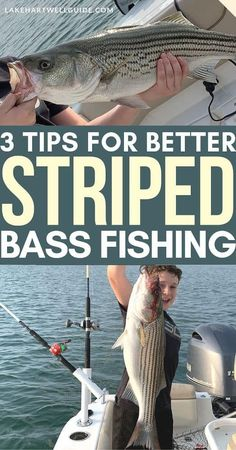 3 Tips for better striped bass fishing - Photography, Landscape photography, Photography tips Bass Fishing Pictures, Bass Fishing Rods, Bass Fishing Videos, Bass Fishing Shirts, Trout Fishing Tips, Fishing Rigs, Fishing Boats, Fly Fishing, Crappie Fishing