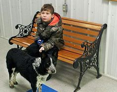 Boy Wins Stray Dog's Trust…and Saves Her Life