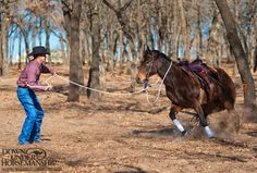 Are you getting ready to bring your horse back to work after time off? Learn what mistake Clinton says most people make when doing so in his #trainingtip on our blog http://duhlink.co//150203tip