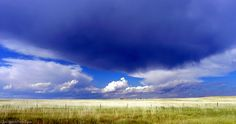 """""""Horses in the Pasture, Bascom Montana"""" by Open Spaces Prairie Places"""