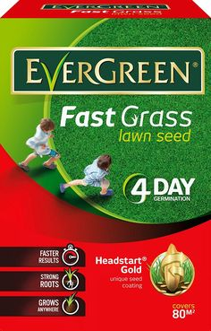 EverGreen Fast Grass Lawn Seed Carton, 2.4 kg -- Check out this great product. (This is an affiliate link) #Gardening