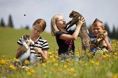 Kinder mit Katzen im Landhotel Spreitzhofer. Couple Photos, Couples, Kids Animals, Cats, Couple Shots, Couple Photography, Couple, Romantic Couples