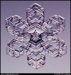 Snowflake Photos by Mark Cassino. Story of Snow - Mark's Blog.