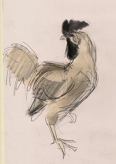 The Cockerel by Julian Williams