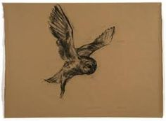 nicola hicks drawings - Google Search Ex Libris, Owls, Art Ideas, Artists, Bird, Tattoo, Google Search, Drawings, Projects