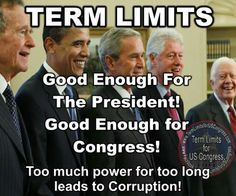 Wake up America! We need term limits! Donald Trump, Political Views, We The People, It Hurts, Knowledge, Wisdom, Sayings, Words, Amen