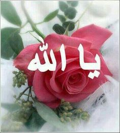 يا رب العالمين Pregnant With A Girl, Beautiful Morning, Allah, Christmas Ornaments, Holiday Decor, Beautiful Wallpaper, Alhamdulillah, Arabic Quotes, Muslim