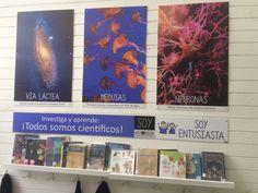 Cover, Books, Neurons, Reading, Libros, Book, Book Illustrations, Libri