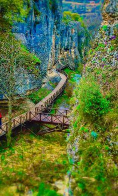 KARABÜK/Tokatlı Kanyonu
