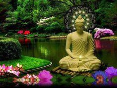 Buddha, Peace, Garden, Meditation