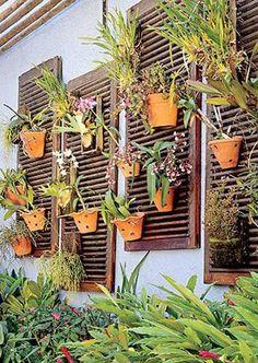 Volets recup en bois pour faire un mur végétal extérieur