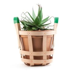 Easily carry your plant around with you
