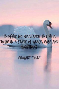 Offer no resistance - Eckhart Tolle  #eckharttolle #eckharttollequotes #kurttasche