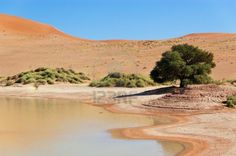 Rent a Cheap Car in Namibia - Book Car Hire at Best Price Car Rental Deals, Namib Desert, Cheap Cars, Car Ins, Beautiful Landscapes, Country Roads, River, Places, Outdoor
