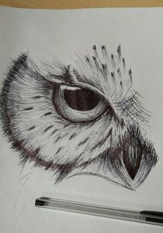 owl sketch by on DeviantArt - Herz Art Sketches; owl sketch by on DeviantArt Art Sketches; owl sketch by on DeviantArt Art Sketches; owl sketch by on DeviantArt – Pencil Art Drawings, Art Drawings Sketches, Cute Drawings, Sketch Drawing, Drawing Ideas, Sketch Tattoo, Drawings Of Owls, Drawing With Pen, Drawing Owls