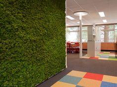 PVP Office - moss wall