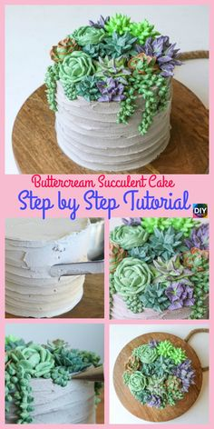 How to DIY Buttercream Succulent Cake – Step by Step - Cake Decorating Simple Ideen Cake Decorating Designs, Creative Cake Decorating, Cake Decorating Techniques, Creative Cakes, Wilton Cakes, Cupcake Cakes, Baking Cakes, Cupcakes Succulents, Cactus Cake