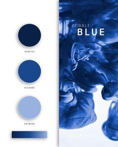 Color palettes 494481234090882111 - Blue color palettes, schemes & combinations Source by wessonsasha Flat Color Palette, Website Color Palette, Colour Pallette, Colour Schemes, Color Palette Blue, Purple Color Palettes, Pantone Azul, Pantone Colour Palettes, Pantone Color