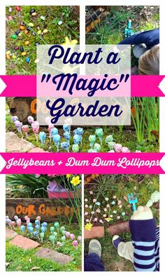 """Plant a magical garden with your kids this spring. All you need is """"Magic"""" Jelly Bean & Dum Dum Lollipops to create this Garden"""