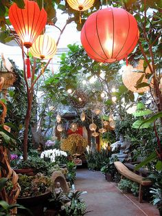 I would LOVE to just have a forest like this ~ Balinese Zen Gardens. Re-create this at home with solar powered lanterns and fairy lights.