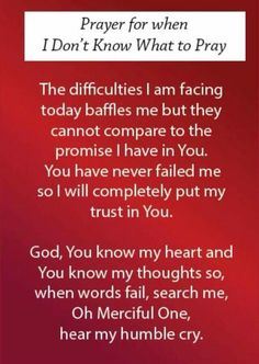 I am struggling right now Lord. I see nothing but the fact that he's blocked me from everything which means they are talking again. I prayed earlier for your will in my life. She and I didn't speak much tonight. I'm sure they were. I feel real scared and lost right now. My mind won't shut off, my heart hurts after today. My wall is building back up. I didn't want that. I was hoping it was in the past. Lord lead me, heal me, guide me. I beg you.