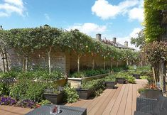 Will Seaman and John Kiernan extended their home, and redesigned the garden space, to indulge their love of entertaining