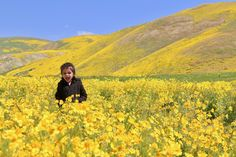 """Chances are if you're reading this you've heard that Southern California is experiencing a """"super bloom"""" this year. This is the first time we've gotten significant winter rains in almost a decade and all the wildflowers are blowing up. Currently there's a place in the Central Valley called Carrizo Plain National Monument that is """"super … Continue reading Carrizo Plain Super Bloom →"""
