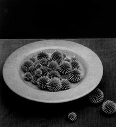 Black and White Photography by Robert Mapplethorpe